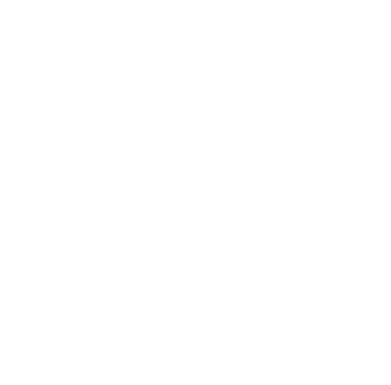 We Feed The Beach